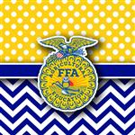 I am an Agriscience Instructor and FFA Advisor here at BHS.