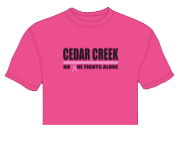 PINK OUT T-SHIRT ON SALE: ORDER TODAY!!!